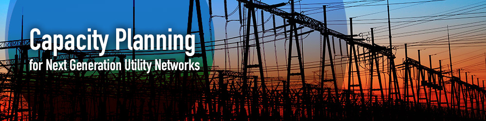 Capacity Planning for Next Generation Utility Networks